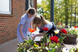 cps-lower-school-outdoor-assigment_28342
