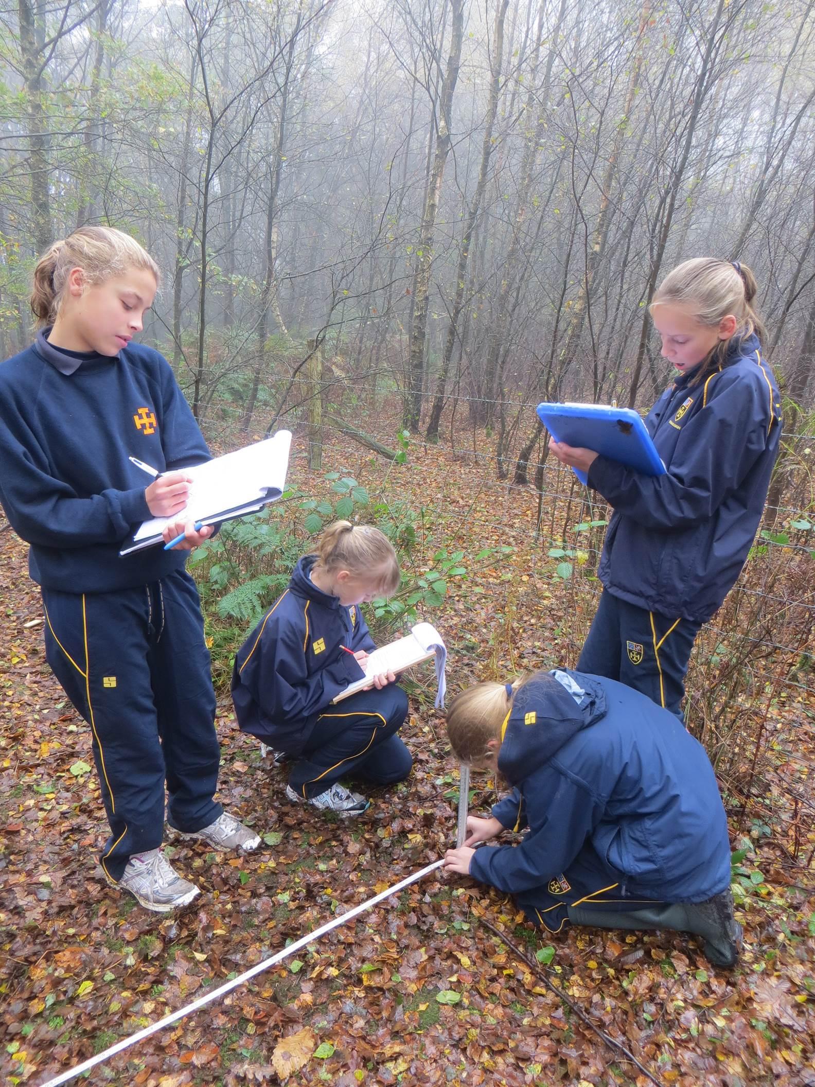 Geography fieldwork - Cranleigh Preparatory ...