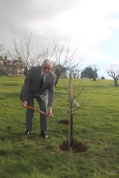 Dudley planting his tree