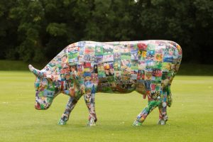 CPS Cow-4569 - Copy